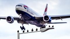 Boeing 777-236(ER) G-YMMI British Airways (William Musculus) Tags: london heathrow egll lhr airport spotting aviation plane airplane william musculus gymmi british airways boeing 777236er baw ba 777200er
