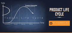 A Comprehensive Guide On Product Life Cycle (alleyjohn01) Tags: productlifecycle product life cycle