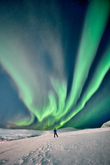 Like a Moth to a Flame (davi_ssilva) Tags: norway northernlights northern lights winter snow night nightsky sony a7iii