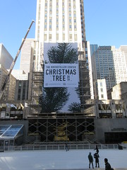 2019 Christmas Tree Rockefeller Center with scaffolding 9634 (Brechtbug) Tags: 2019 christmas tree rockefeller center with scaffolding waiting be decorated filled out extra green branches nyc 30 rock new york city standing up above ice rink without before fixing holiday decoration ornaments 11122019 around noon lights lites light oversize load ornament wednesday
