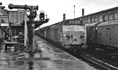 Carlisle 1970 (paul_braybrook) Tags: d408 50008 class50 englishelectric type5 diesel carlisle westcoast railway trains