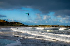 The kite surfer (odell_rd) Tags: embletonbay kitesurfer dog northumberland beach wind waves