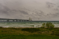 Mackinac Bridge on Stormy Day II (rschnaible) Tags: mackinac city michigan mid west outdoor sightseeing bridge great lake superior water shore seagull bird wild landscape