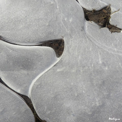 Puddle ice abstract - Abstrait d'une flaque d'eau (monteregina) Tags: québec canada flaque puddle glace ice eau water icy cercles circles formes shapes geometrie geometry patron patterns lignes lines swirls textures geometric frost forms cracks eis frozen froid cold kalt iceformation couches layers macro closeup monteregina details design nature mince thin icedpuddle transparent abstract abstrait curves courbes swirl détails natur motifs structures designs abstrakt pfütze natural abstractions graphic art troudeau marre iceart lartdelaglace pfülze frozenpuddle iced abstractnature natureabstraite texture pfützen méandres winding naturalabstractions