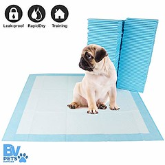 BV Pet Potty Training Pee Pads for Dog and Puppy, RapidDry Technology 22  x 22 , 100-Count (shop8447) Tags: 100count bv dog for pads pee pet potty puppy rapiddry technology training