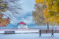 Winter meets autumn fall colours - Kew Beach, Toronto (Phil Marion (177 million views - THANKS)) Tags: sunrise sunset dusk fun shadows hdr snow art model feet canon5diii 5d3 canon toronto canada candid architecture street portrait landscape wildlife nature explored bird urban flowers macro insect sony nikon longexposure ontario phil marion philmarion philippemarion explore skyline cityscape home sky water outside beach dog old young indoors travel night smiling