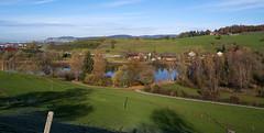 morning walk 14-11-2019 013 (swissnature3) Tags: switzerland bettenau countryside landscape nature autumn trees lake