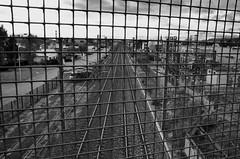 Passage protégé  - Protected passage (Philippe Haumesser (+ 8000 000 view)) Tags: voie ferrée railway ville city noiretblanc blackandwhite monochrome colmar alsace elsass hautrhin 68 france nikond7000 nikon d7000 reflex 2019