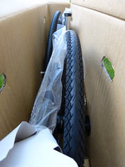 Spot in box (wwimble) Tags: spot acme bicycle bike box someassemblyrequired