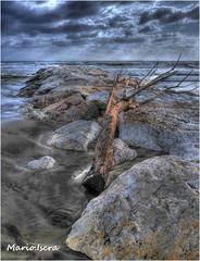forza del mare (bruto68) Tags: bruto68 roma rome hdr mare color colore nikon nikond300s nikond200 nikonitalia nuvole clouds maredinverno spiaggia photomatix photo natura