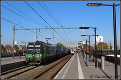 LTE 193 738, Elst (10-11-2019) (Teun Lukassen) Tags: lte br193 siemens vectron 193738 loreley rzepin gvt tilburg elst treinen trains züge 2019