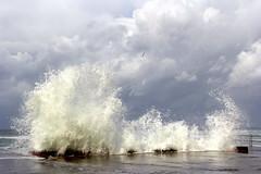 Ondata e Nuvole (52picchio) Tags: 2019 novembre november campania canoneos60d canon cilento castellabate maestrale mare molo marina explore explored flickr fluidrexplored fluidr flickrnova azzurromare tempesta temporale gabbiano hairygitselite harvest lungomare esplora t