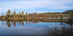 morning walk 14-11-2019 021 (swissnature3) Tags: switzerland bettenau countryside landscape nature autumn lake waterscape