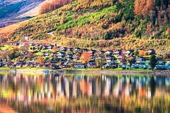 Autom is a beautiful season colourful and magical. Drimsynie Scotland (ranjo sheikh) Tags: canonuk canonlenses drimsynie lochgoilhead scotland naturephotography lovenature nature landscape landscapephotography