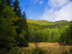 Wandern  Istrien-  Naturpark Ucka u Aufstieg  Vojack 3 (mohnblume2013) Tags: vojack ucka naturpark istrien kroatien wald berg wandern landschaft natur
