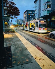 First Hill Street Car on Yesler. (Seattle Department of Transportation) Tags: seattle sdot transportation first hill street car yesler white little saigon flowers wrap smith tower transit stop public art instagram