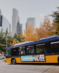 Flip Your Trip bus ad (Seattle Department of Transportation) Tags: seattle sdot transportation flipyourtrip bus ad transit downtown smt fall trees instagram