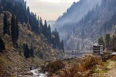En route Waichin Valley, Himachal Pradesh (subhojitchoudhury) Tags: canon77d canon landscape waichin waichinvalley himachal himachalpradesh india nature naturalbeauty 50mm prime primelens