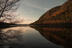 A Tree and a Loch (rattigan_tim) Tags: sctoland scotland mountains yellow sunset winter snow capped rocky trees scenery landscape nx3000 migdale scenic travel uk reflections autumn seasons loch tree water