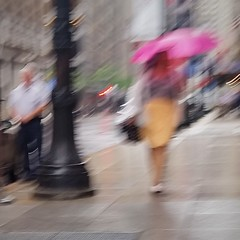Pink Umbrella (michael.veltman) Tags: pink umbrella walk in the rain chicago illinois ty c pretty co p