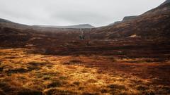 Amazing Iceland - Ísafjörður IV (Passie13(Ines van Megen-Thijssen)) Tags: ijsland iceland island vestfirðir ísafjarðarflugvöllur canon inesvanmegen inesvanmegenthijssen