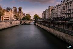 Paris ... Notre Dame (capellini.chiara) Tags: cathedral longexposure notredame lasenna parigi parís france francia
