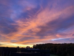 Cinematic (frankdorgathen) Tags: smartphone iphone8plus morning morgens ruhrgebiet ruhrpott ruhrarea querenburg bochum nature natur himmel sky sonnenaufgang sunrise dawn