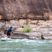 An explorer paddle boarding down the Green River in Utah's Desolation Canyon Area