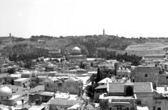 Jerusalem (Paolo Levi) Tags: jerusalem canon ftb fd 50mm kodak tmax film analogue