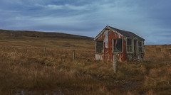 The Shed (johnny_9956) Tags: shack shed building abandoned urbex rust rusty uk scotland shetland field fence outdoor outside canon 7d