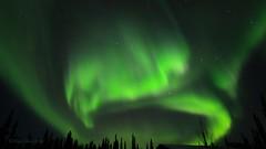 Samhain Lights (Katy on the Tundra) Tags: northernlights auroraborealis aurora nightsky