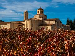 ¡Cuánto silencio retienen! (Jesus_l) Tags: europa españa valladolid sanbernardo samtamaríadevalbuena monasterio jesúsl
