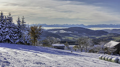the first winterday in Upper Austria (Holgbry) Tags: ngc winter mountain alpen berge gebirge schnee landscape eos 5d mark iv canon