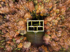 Moore Hall...Fall, Mayo, Ireland (Sean Hartwell Photography) Tags: moorehall mayo fall autumn ruin ruins countymayo ireland trees manor house abandoned aerial drone