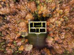 Moore Hall...Fall, Mayo, Ireland (Sean Hartwell Photography) Tags: moorehall mayo fall autumn ruin ruins countymayo ireland trees manor house abandoned aerial drone