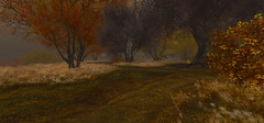 three landscapes 1/3 (s t o y a) Tags: secondlife landscape nature autumn