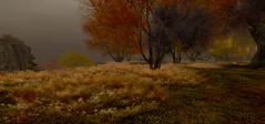 three landscapes 3/3 (s t o y a) Tags: secondlife landscape nature autumn