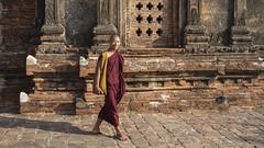 DSC_3089 (Daveoffshore) Tags: david ferguson daveoffshore daveoffshorenetscapenet myanmar people person burmese monk walk temple stone smile happy