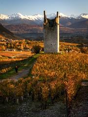 Casaque rouge (Fab. A) Tags: chateau ruines automne autumn mountains montagnes vignes