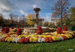 Parigi (capellini.chiara) Tags: autunno autumn park garden sunnyday bluesky colori colors fiori flowers fontana fountain france francia parigi paris