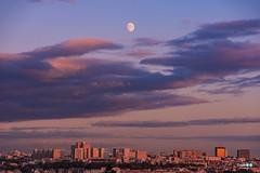 Paris and the moon (capellini.chiara) Tags: goldenhour cielo purplesky tramonto luna moon france francia skyline parigi paris