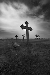 The Guard II (Tore Thiis Fjeld) Tags: varhaug gamle kirkegård graveyard cemetery jackdaw cross tombstone headstone costal cost sea seaside guard watching bird kaie kors gravplass mono bw black white monocrom nikon d800 sigma 50mm f14 dg hsm art