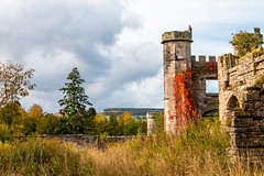 Within the ruins (Keith now in Wiltshire) Tags: lowther castle tower ruins stone wall bird climber virginiacreeper garden wildness tree landscape sky cumbria england hdr building architecture