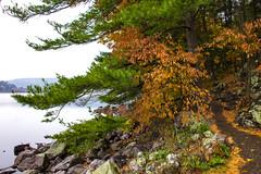 IMG_5364_Done (PawelPach) Tags: devilslakestatepark baraboo wisconsin fall colors leaves leaf fallcolors orange water panorama park scenery lake trees red rock rocks view