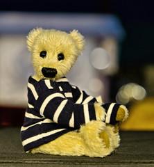 I Shot a Bear (Hindrik S) Tags: teddy bear teddybeer teddybär bär toy portrait portret spielzeug boartersguod speelgoed trui pullover pulli arms legs feet eyes sonyphotographing sony sonyalpha a77ii α77 slta77ii sonya77ii sonyilca77m2 sony1650mmf28dtssm sal1650 2019 on1photoraw2019 on1pics