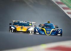 BritCar@Brands Hatch (MotoFoto by Ross Farnham) Tags: brandshatch motorsport racing d4 nikon 500mm f4 rossfarnham drama