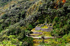 Perù - Qunchamarka (oriana.italy) Tags: perù qunchamarka incatrailtomachupicchu archaeologicalsite cuscoregion urubambaprovince drystone rooflesswalls