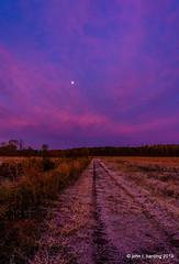 Frost Moon (T i s d a l e) Tags: tisdale frostmoon daybreak dawn path farm field autumn fall november 2019 senorthcarolinabr