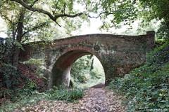 "Gareth's Photo of the Week 45 ""Old Bridge"""