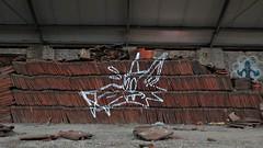 Avoid / FNO - 14 nov 2019 (Ferdinand 'Ferre' Feys) Tags: gent ghent gand belgium belgique belgië streetart artdelarue graffitiart graffiti graff urbanart urbanarte arteurbano ferdinandfeys